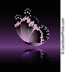 Bright pink butterfly isolated on black background
