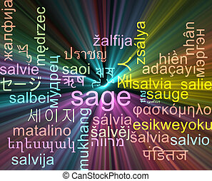 Sage multilanguage wordcloud background concept glowing -...