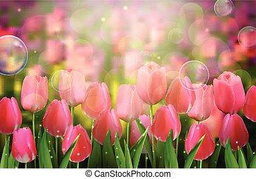 Red tulips flowers in the garden