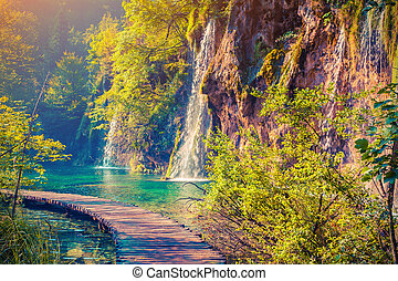 Colorful summer morning in the Plitvice Lakes National Park...