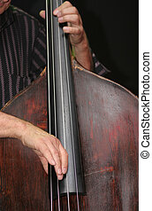Double Bass - Bass Player