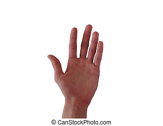 Hand Up - Human hand up on the white isolated background