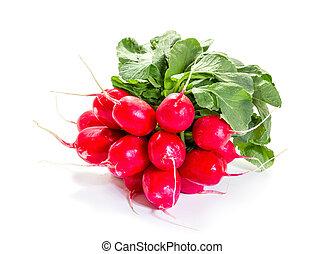 Fresh raw radishes on a white background