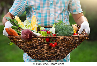 Basket filled fresh vegetables in hands of a man wearing...