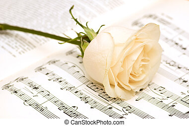 Single white rose on musical notes page