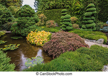 Small pond with lilies - Small quiet pond, overgrown with...