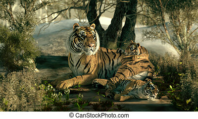 Siberian Tiger Family, 3d CG - 3d computer graphics of a...