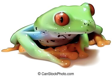 Red-eyed Tree Frog (Agalychnis callidryas) - Colored...