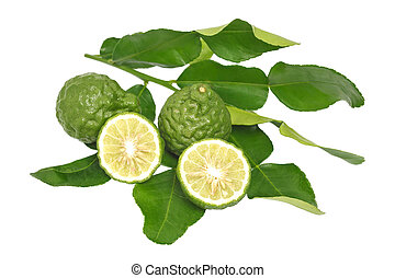 bergamot kaffir lime leaves herb fresh ingredient isolated -...