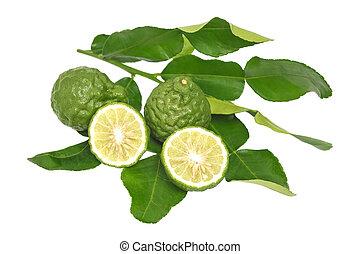bergamot kaffir lime leaves herb fresh ingredient isolated -...