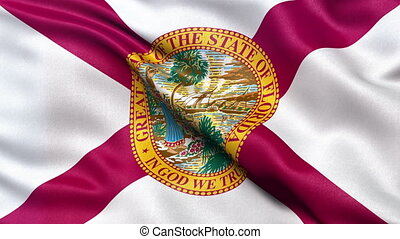 Florida US state flag seamless loop - Realistic HD Florida...