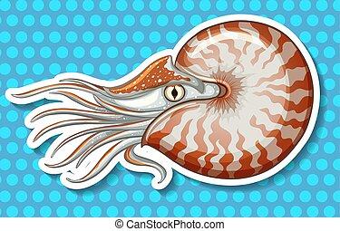 Sea creature - Closeup sea creature on blue polka dot...