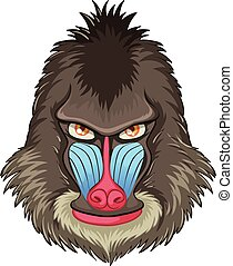 Mandrill baboon - Illustration of a mandrill baboon head