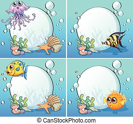 Fish - Sea creatures underwater