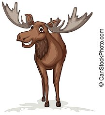 Moose - Illustration of a close up moose