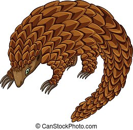 Pangolin - Illustration of a close up pangolin