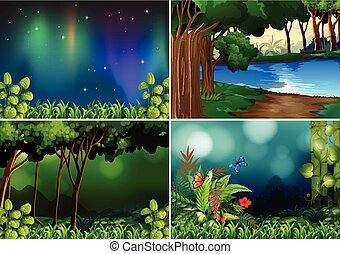 Forest scene - Four scenes of forest at night time