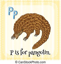 Alphabet P - Flashcard letter P is for pangolin