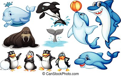Sea creatures - Illustration of many kind of sea animals