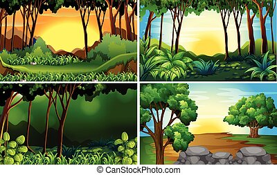 Forest scenes - Illustration of four different scene of...
