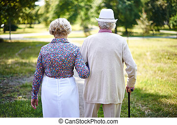 Walk in park - Rear view of seniors taking a walk in the...
