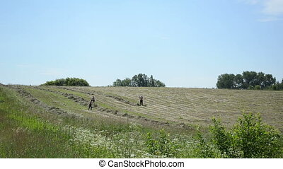 men rake hay field work - men half undressed raking hay in...