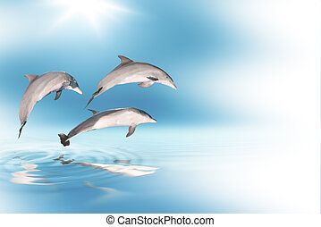 dolphins and blue sky