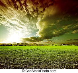dreamscape.Green fields - Sunset green fields...