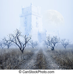 Mysterious foggy landscape - Mysterious foggy scenery.Castle...