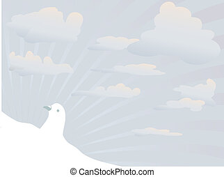 White dove on blue sky