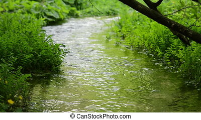 Stream water green meadow. - Flowing stream water green...