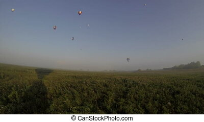 View of flying over field in early morning Summer time