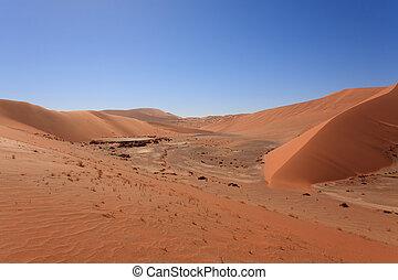 Hidden Vlei - Panorama of red dunes from Hidden Vlei,...