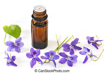 Bach flower remedies of violets on white background -...