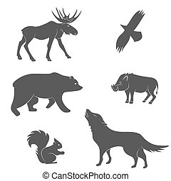 Set of forest animals vector