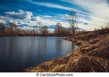 Evening on the lake with reeds - Evening on the lake with...