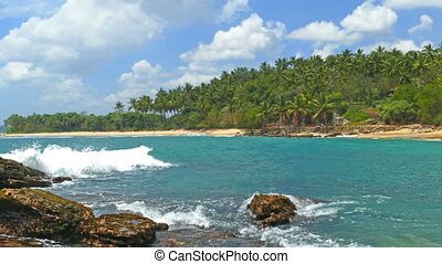 sea waves on tropical beach and coconut palms - beautiful...
