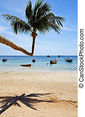 isle asia in kho phangan thailand bay beach rocks pirogue...