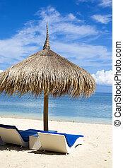 Ocean Coastline with Sun Umbrella - Sea Coastline with Grass...