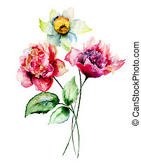 Peony and Narcissus flowers, watercolor illustration