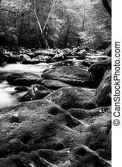Tranquil Stream in the Smokies - Silky stream captured in...
