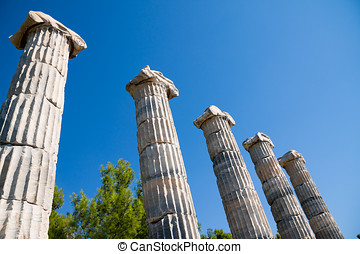 Priene, Ionic columns in Temple of Athena, Turkey