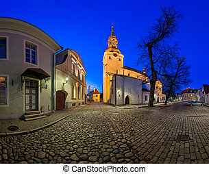Saint Mary's Cathedral and Kiriku Plats on Toompea Hill in...
