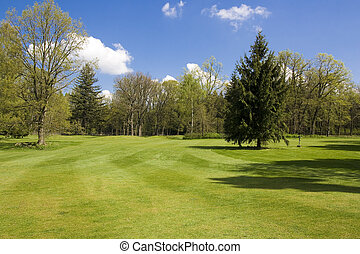 golf course - fairway of a golf course