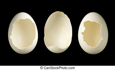 Three empty eggs - Template image of three open empty eggs,...