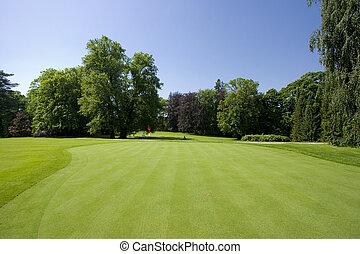 golf course - Green of a golf course