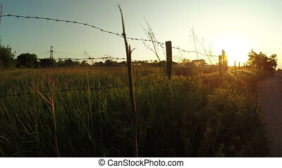 Barbed wire fence - In backlight setting sun garden with...