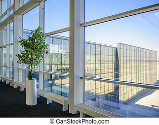 Large windows overlooking the Donetsk airport, a tree...