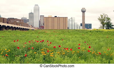 Dallas Texas City Skyline Metro Downtown Trinity River...