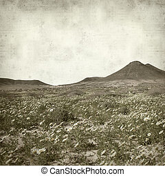 textured old paper background with Fuerteventura Landscape